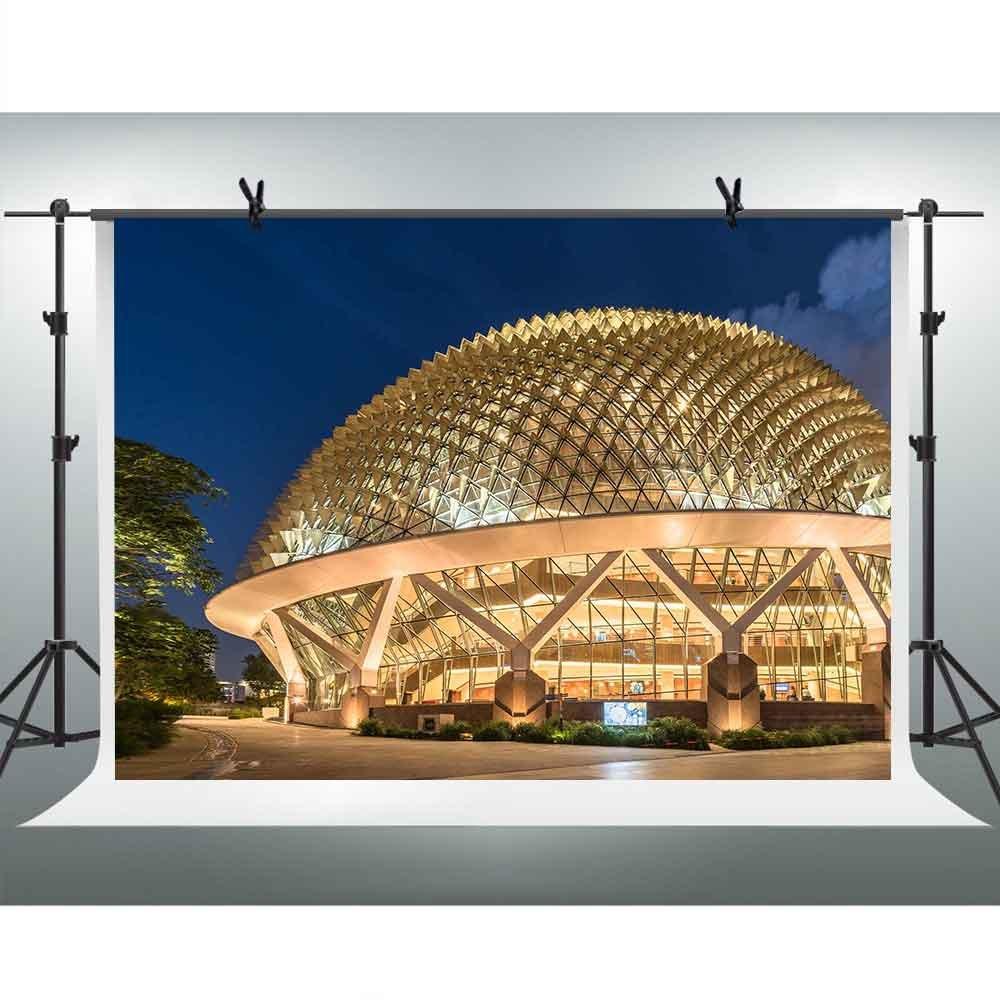 FHZON 7x5フィート シンガポール ビンハイ アートセンター 写真 背景 夜のショーライト 背景 テーマ パーティー YouTube背景幕 写真ブース スタジオ小道具 GYFH316   B07DMFBZQJ