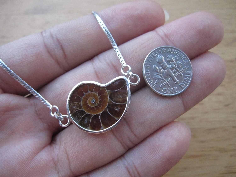 Ammonite,Fossil,Fibonacci 925 Sterling Silver Bracelet,BAN