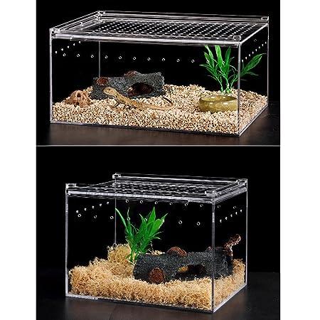 perfk Caja de Acrílico Transparente Terrarios Complimentos Pecera Acuario Plantado Fácilmente Cómodo - L: Amazon.es: Productos para mascotas