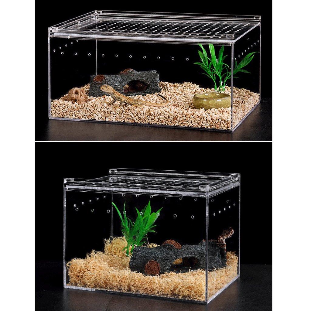 B Blesiya Reptile Insect Spider Turtle Tank Acrylic Transparent Breeding Box Vivarium Lid 15x12x12cm by B Blesiya (Image #3)