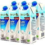 Soster 索斯特 全脂牛奶 家庭装1L*6(奥地利进口)(特卖)