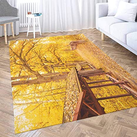 Amazon Com Outdoor Area Rug Shorping 5x7 Area Rug Red Area Farmhouse Rug Beautiful Bright Autumn Background Yellow Trees In Enchanting Kids Rugs Modern Area Rugs For Bedroom Cute Area Rug Kitchen