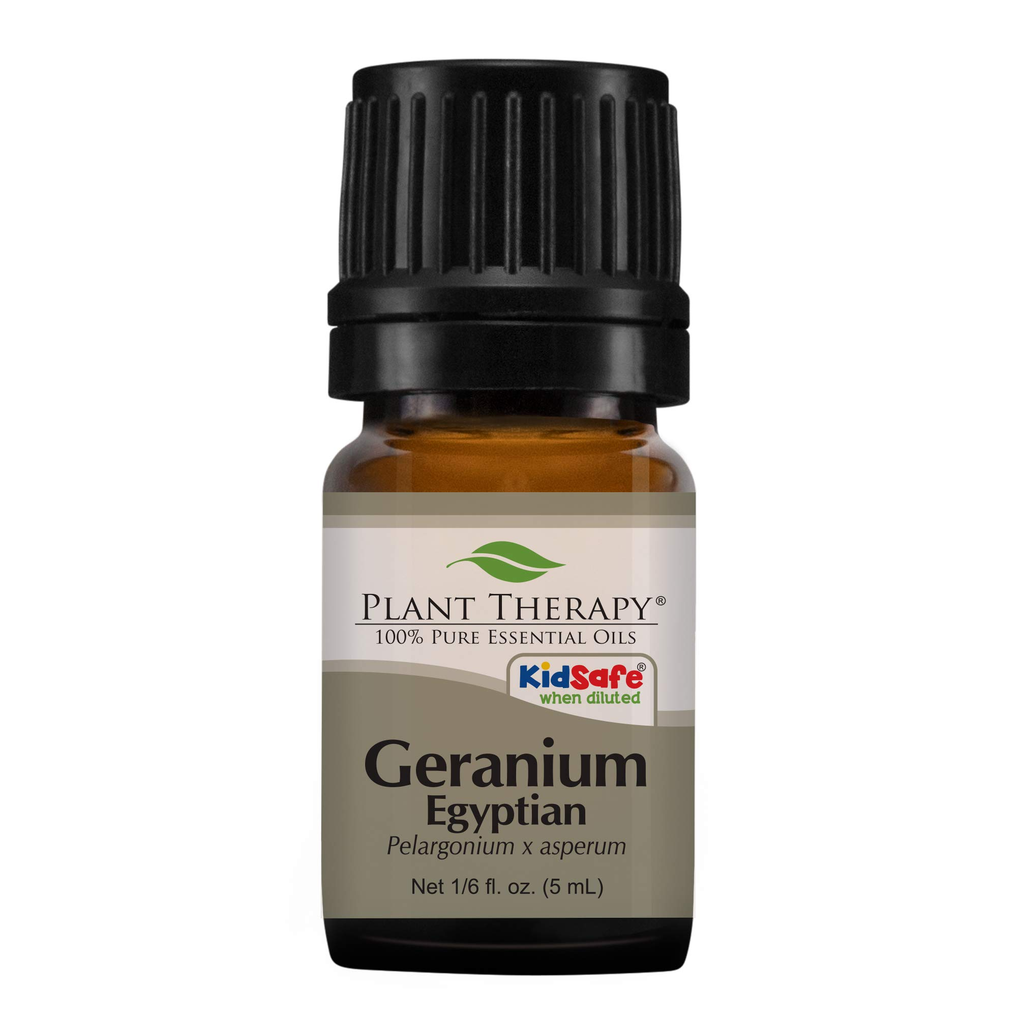 Plant Therapy Geranium Egyptian Essential Oil | 100% Pure, Undiluted, Natural Aromatherapy, Therapeutic Grade | 5 milliliter (1/6 ounce)