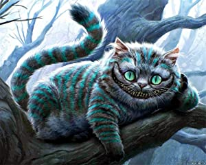 Paint by Numbers Kits DIY Oil Painting Home Decor Wall Value Gift - The Cheshire Cat 16X20 Inch (No Frame)