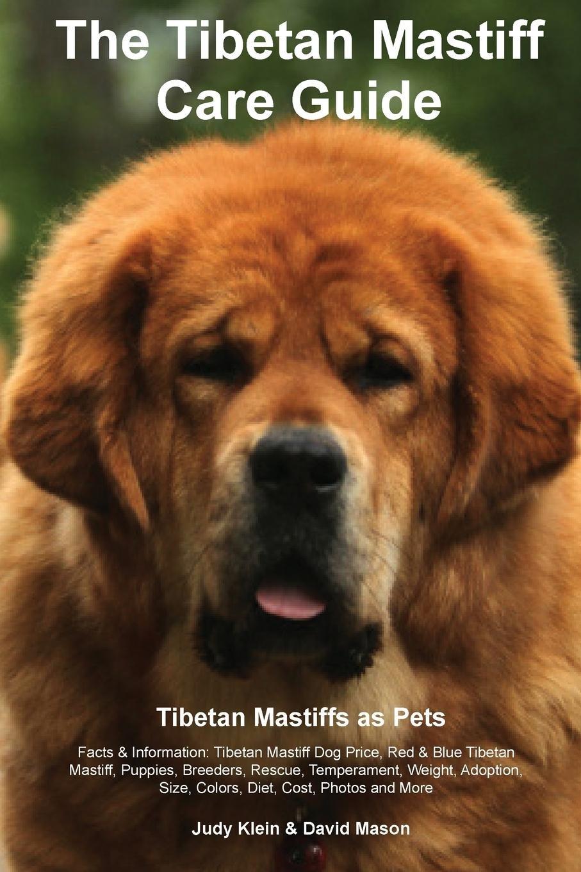 The Tibetan Mastiff Care Guide  Tibetan Mastiff as Pets