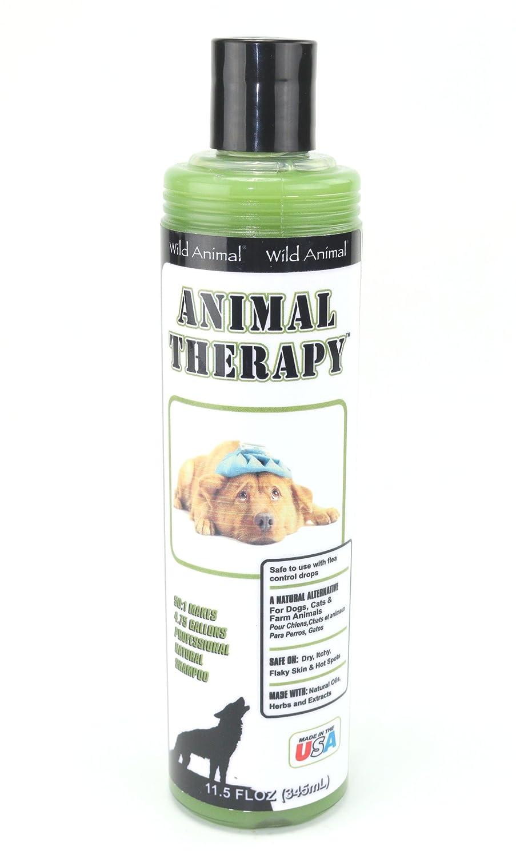Amazon.com: Wild Animal Animal Therapy 50:1 Shampoo, 11.7 oz.: Pet Supplies
