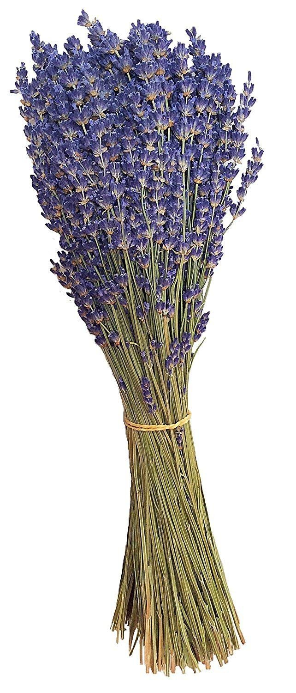 WHYQZ Natural Dried Lavender Bundles Stems-Air Real,Freshly Harvested Royal Velvet Lavender Bundles for Home & Party Wedding Decor