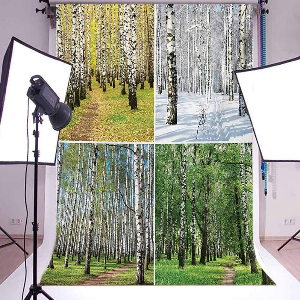 Landscape 10x12 FT Photo Backdrops,Pathway in Woodland Birch Tree Jungle in The Fall Winter Spring Summer Season Background for Photography Kids Adult Photo Booth Video Shoot Vinyl Studio Props