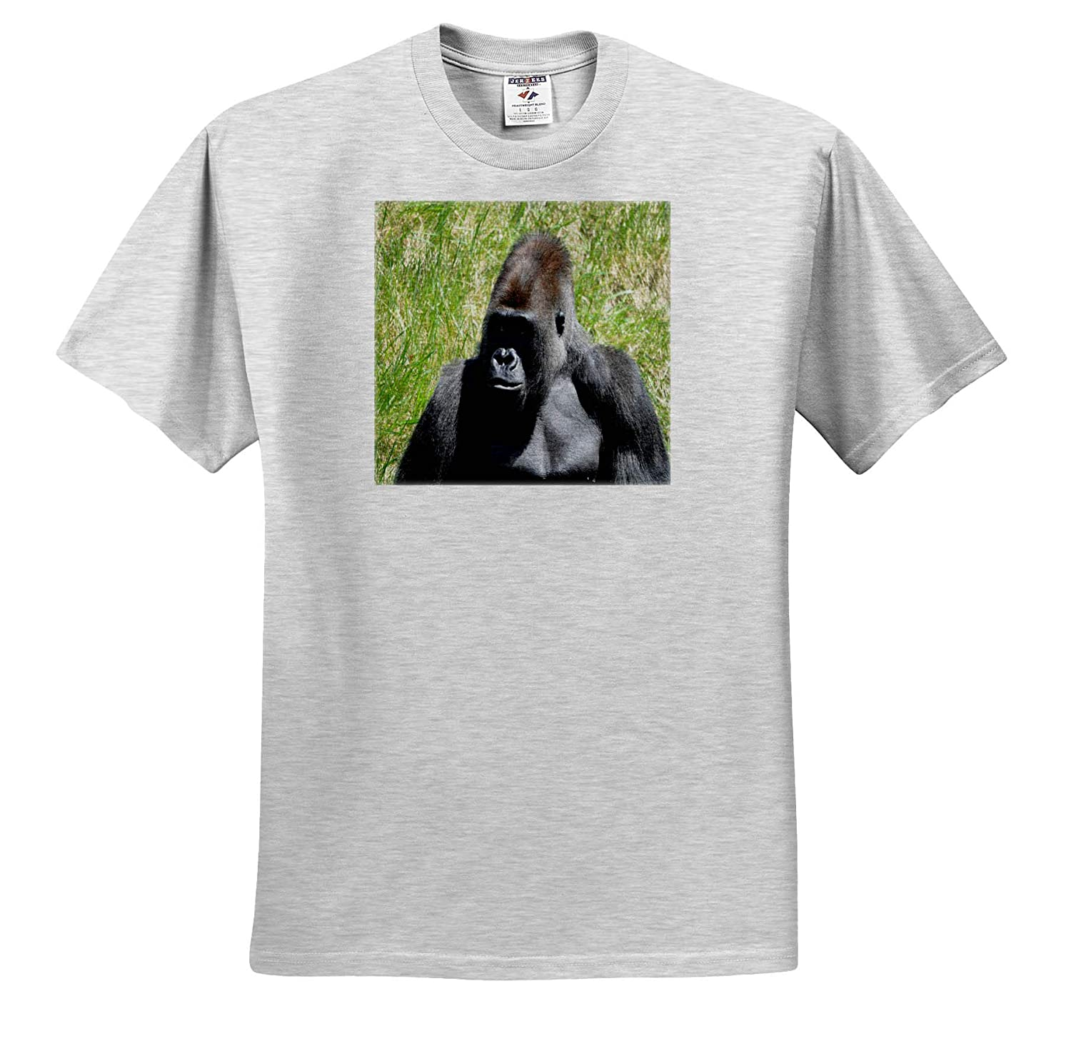 Adult T-Shirt XL Animals 3dRose Dreamscapes by Leslie Silverback Gorilla Chip ts/_314298