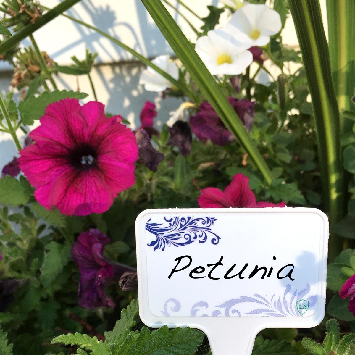 Planta y jardín de protección impermeable etiqueta marcadores ...