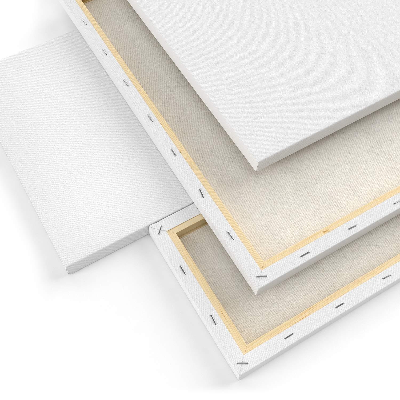 50x50 20x25 y 25x15 cm ARTEZA Lienzos para pintar cuadros Pack de 4 lienzos variados aficionados y principiantes Ideales para profesionales Imprimaci/ón sin /ácidos 30x40 100/% algod/ón