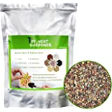 The Next Gardener Succulent and Cactus Bonsai Gritty Mix Rocks, DIY Additive Pre-Mixed Faster Draining Blend, No Root Rot, 1.