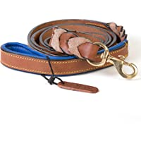 PetsUp Dog Leash for Small Medium Large Dogs (6 Feet x 1 inch, Royal Leash-Tan/Blue)