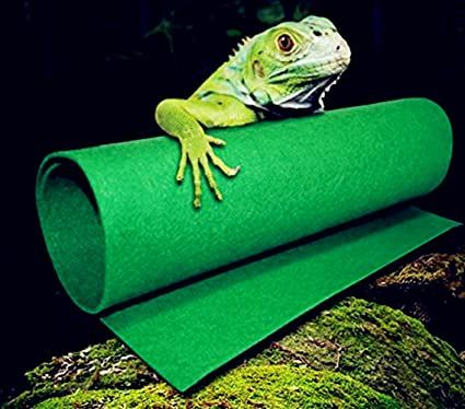 Reptiles Carpet Terrarium Liner, FMJI Bearded Dragon Accessories Reptiles  Cage Mat/Substrate for Lizards/Turtles/Snakes Iguana Supplies