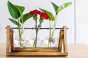 NYFSTORE Desktop Plant Terrarium Glass Planter Bulb Vase with Retro Solid Wooden Stand and Metal Swivel Holder for Hydroponics Plants Home Garden Wedding Decor (3 Bulb Vase)