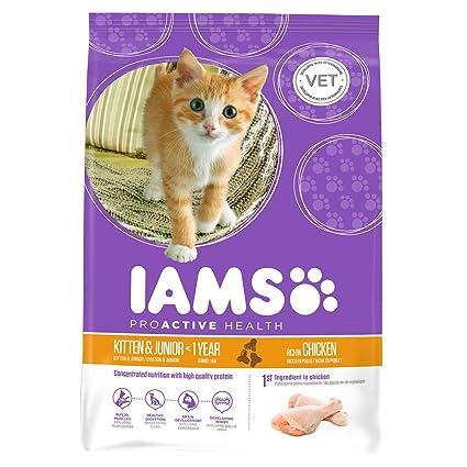 Iams Kitten & Junior Pienso para gatos pollo 700g: Amazon.es ...
