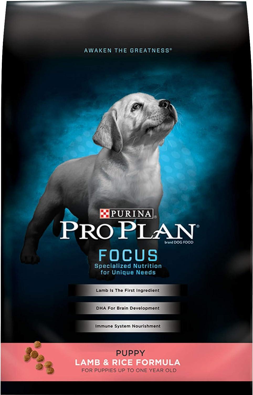 Amazon Com Purina Pro Plan Dry Puppy Food Focus Lamb Rice Formula 6 Lb Bag Pet Supplies