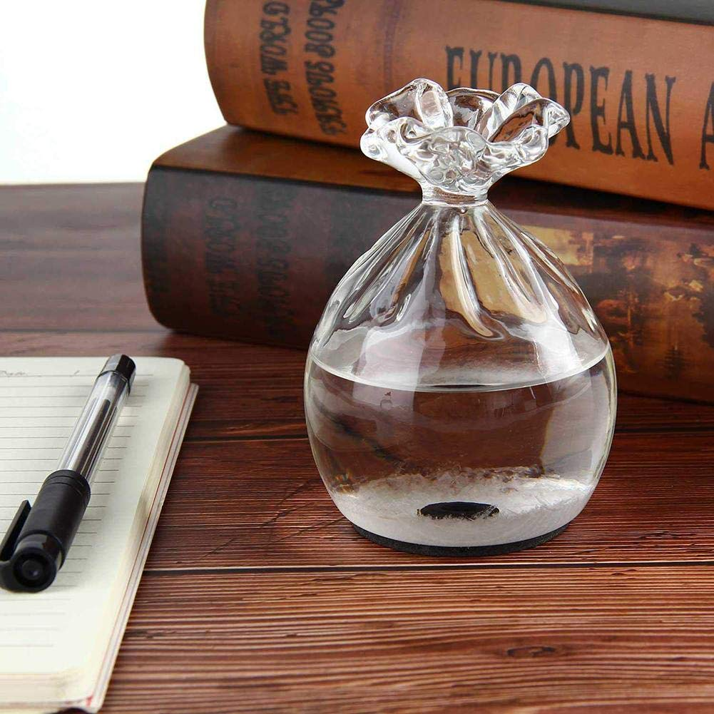 Storm Glass Weather Forecaster - Mini botella de vidrio para ...
