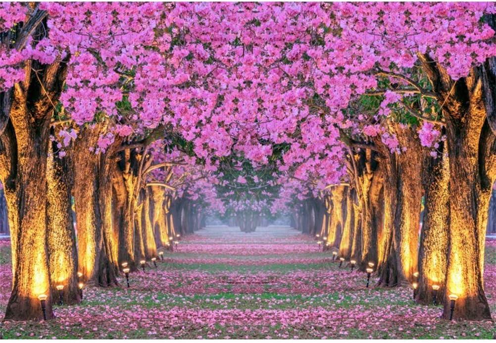 10x7ft Romantic Pink Flowers Blossom Trees Vinyl Photography Background Wedding Photo Backdrops Spring Park Landscape Lamplight Petal Road Newlywed Girls Portraits Shoot Bridal Shower