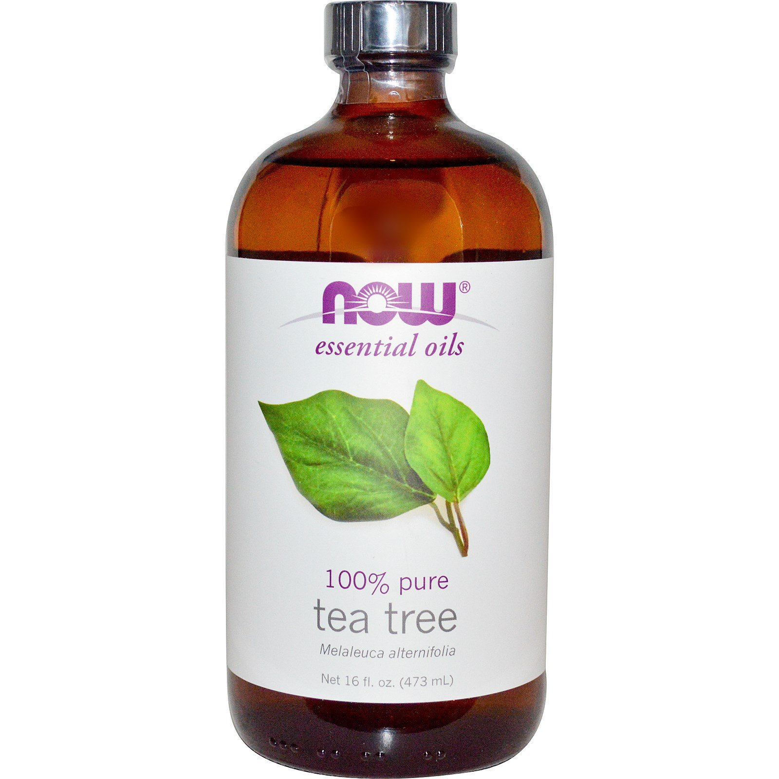 Now Foods Tea Tree Oil - 16 oz. 6 Pack