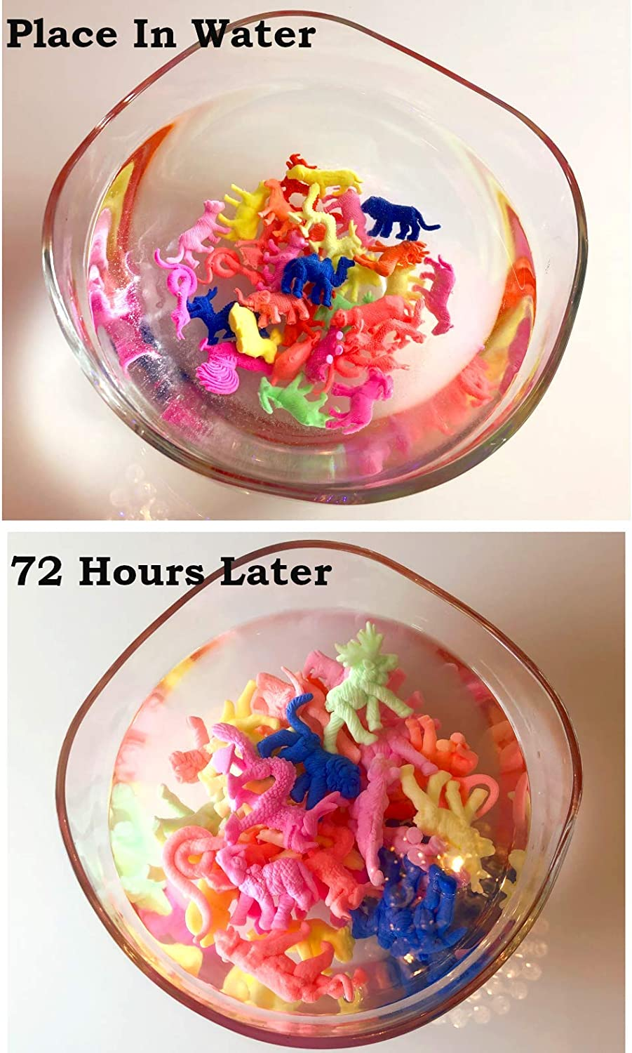 EverglowBeads Colorful Water Growing Farm /& Wild Animals Party /& Sensory Toys for Kids Pack of 32 Expandable Animals Educational