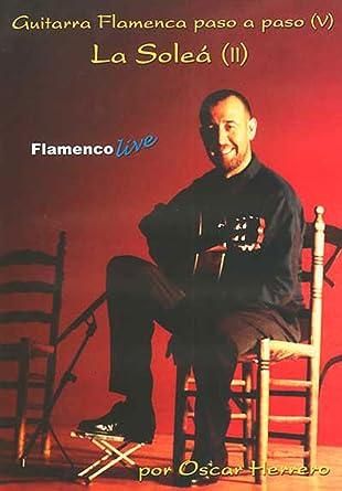 Guitarra Flamenca paso a paso 5