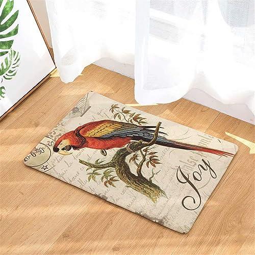 FANNEE Joy Parrot Bird Absorbent Welcome Entrance Door Mat Indoor Mat Anti-Skid Machine Washable Door Mat