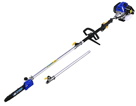 Blue Max 53542 Gasoline Pole Saw – Best Professional Pole Saw