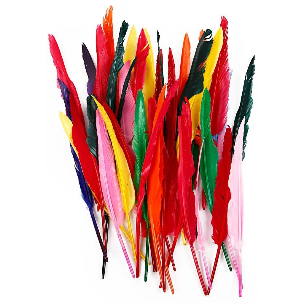 surtido de colores 100surtido Plumas l 29-31 cm oca