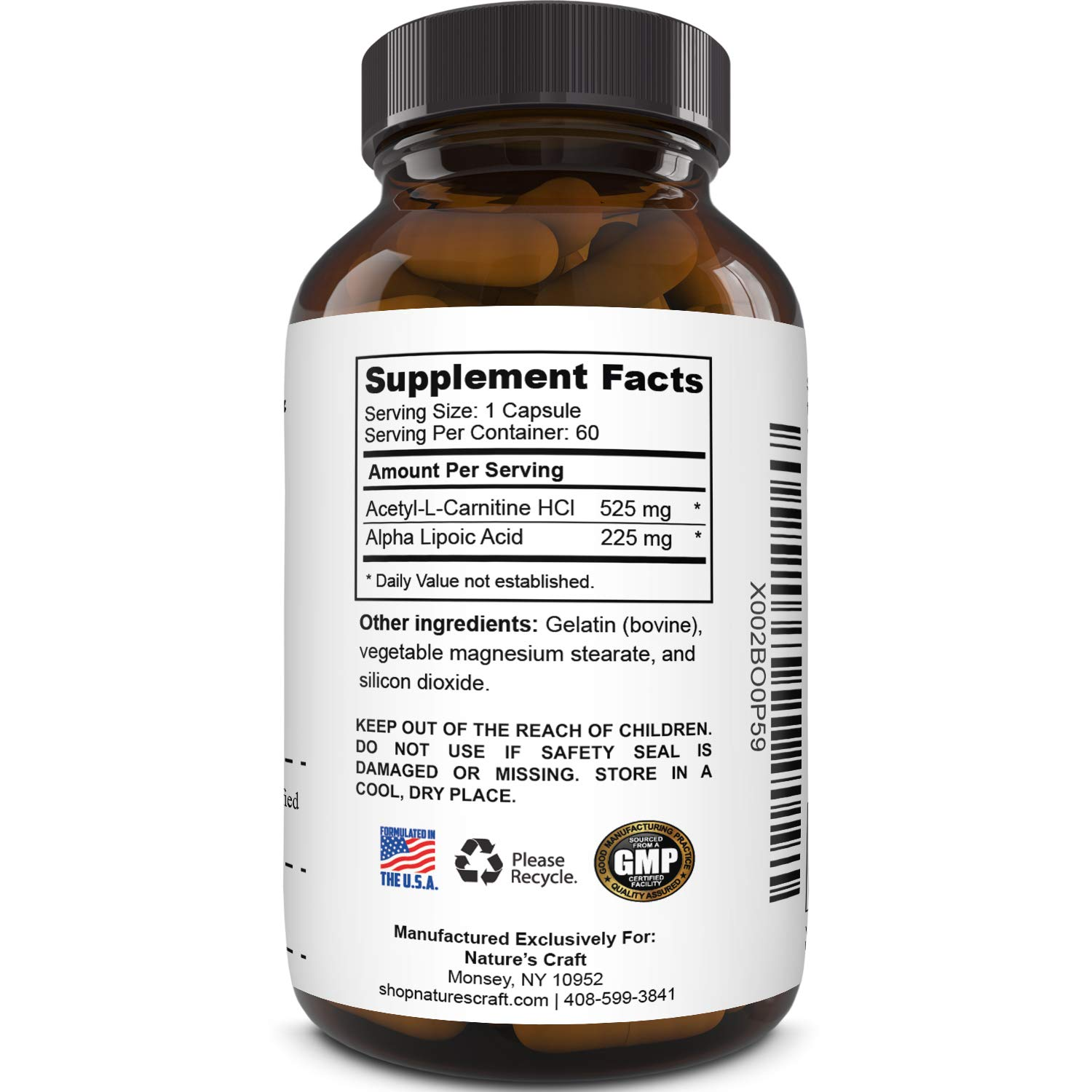 Pure Alpha Lipoic Acid Supplement with Acetyl L-Carnitine - Natural ALA ALC Amino Acids Boost Memory Support Mental Performance and Raise Energy Levels Metabolism - 60 Capsules by Nature Berg