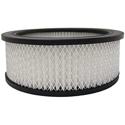 Luber-finer AF146 Heavy Duty Air Filter: Automotive [5Bkhe0105650]