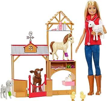 Barbie-GCK86 Giocattolo, Multicolore, GCK86: Amazon.it: Giochi e