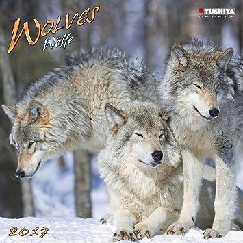 Calendario 2017: Lobos – Jauría – Bosque – Grandes espacios ...