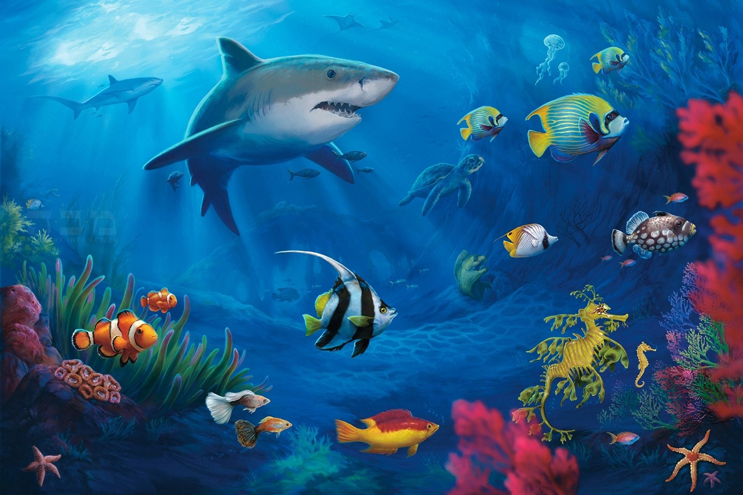 CHOIS Custom Films CF3018 Animal Fishes Corals Underwater Glass Window Frosted 4' W by 3' H by CHOIS