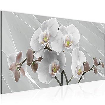 Bilder Blumen Orchidee Wandbild 100 x 40 cm Vlies - Leinwand Bild XXL  Format Wandbilder Wohnzimmer Wohnung Deko Kunstdrucke Grau 1 Teilig - Made  IN ...