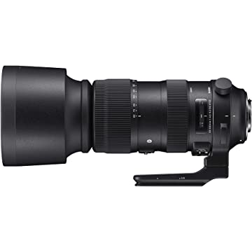 best selling Sigma 60-600mm f/5-3
