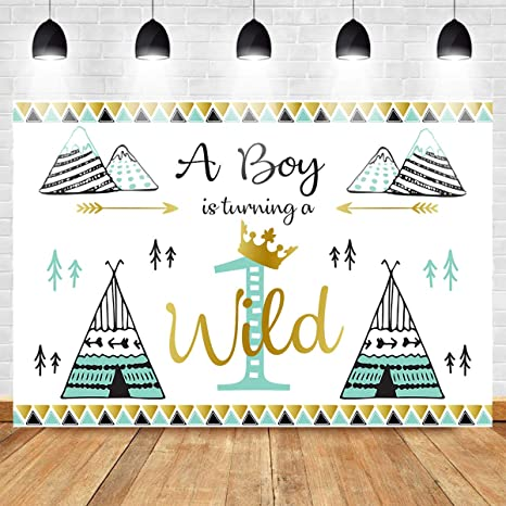Mocsicka Wild One Backdrop 7x5ft Vinyl 1st Birthday Party Decoration Banner For Boys Photo Backdrops Bohemian