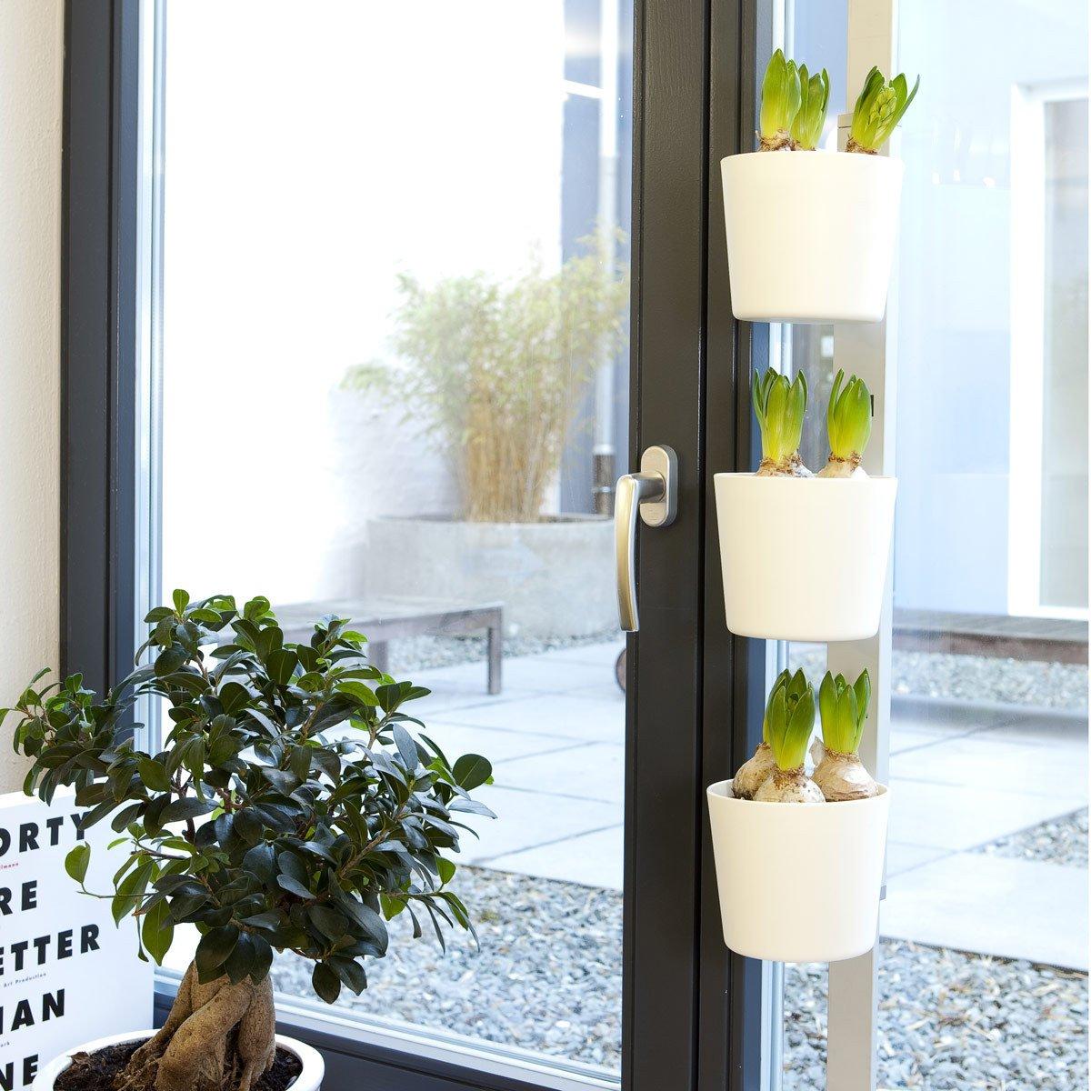 Kräuter- und Pflanzenleiter \'Vega\', 72,5 bis 111,5 cm, weiß: Amazon ...