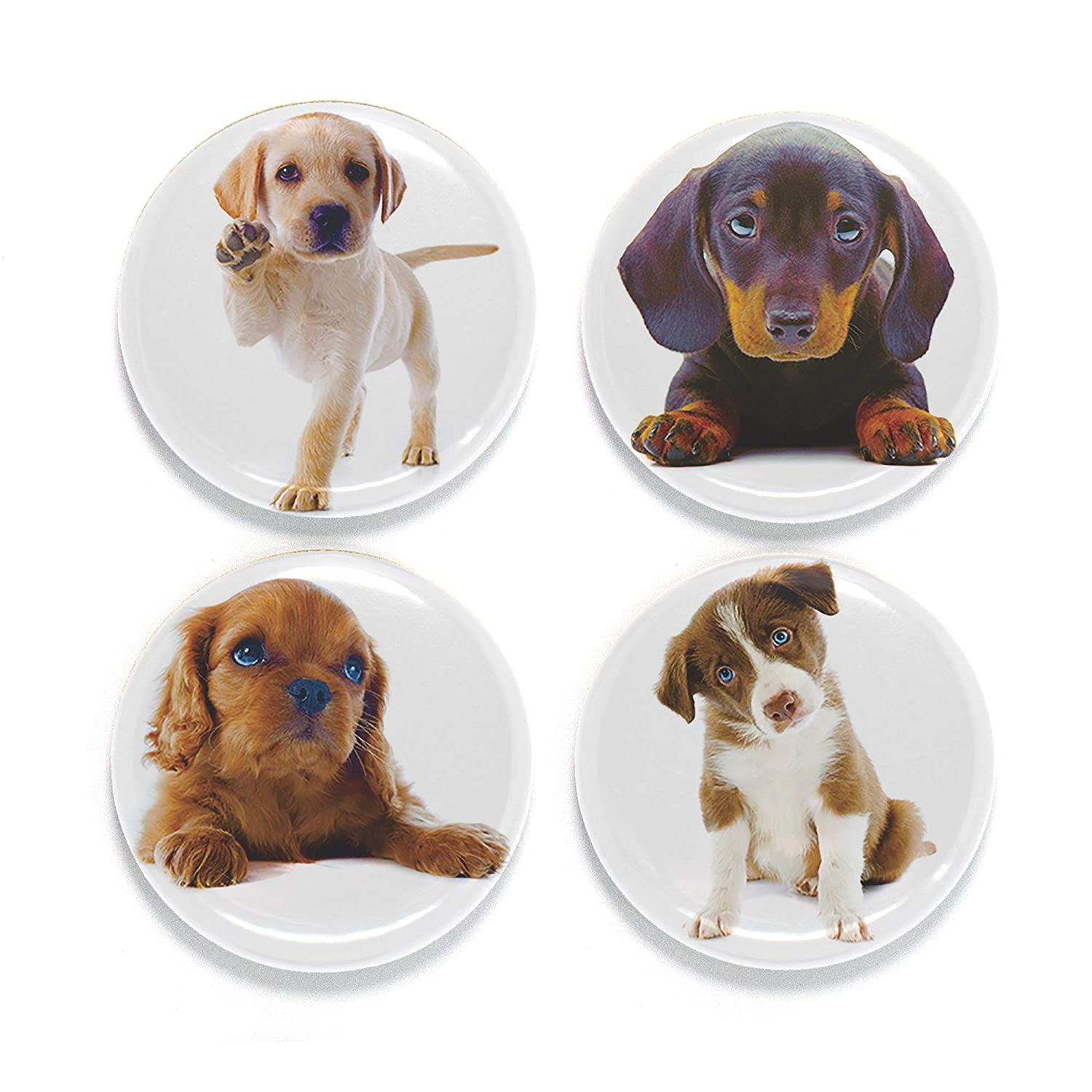 "Buttonsmith Puppies Magnet Set - Set of 4 1.25"" Magnets - Made in the USA"