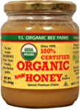Ys Eco Bee Organic Honey 1 Pound Jar