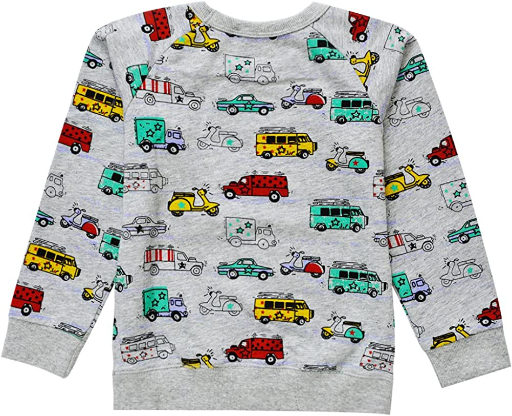 BTGIXSF Little Boys Cotton Crewneck Cartoon Long Sleeve Pullover Sweatshirts