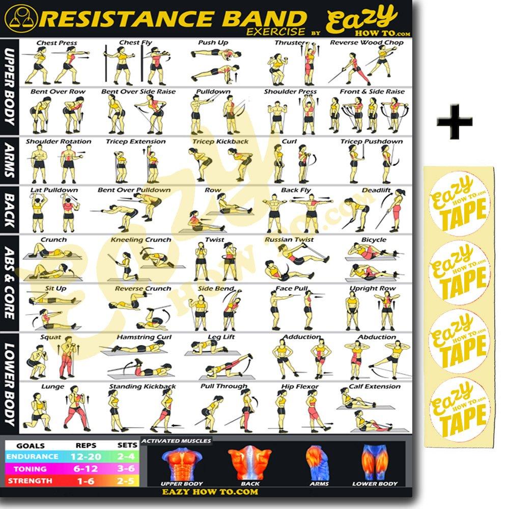 Eazy cómo a banda de resistencia ejercicio entrenamiento Poster Grande 51 X 73 cm tren Endurance, tono, construir fuerza & Músculo Gimnasio en casa gráfico: ...