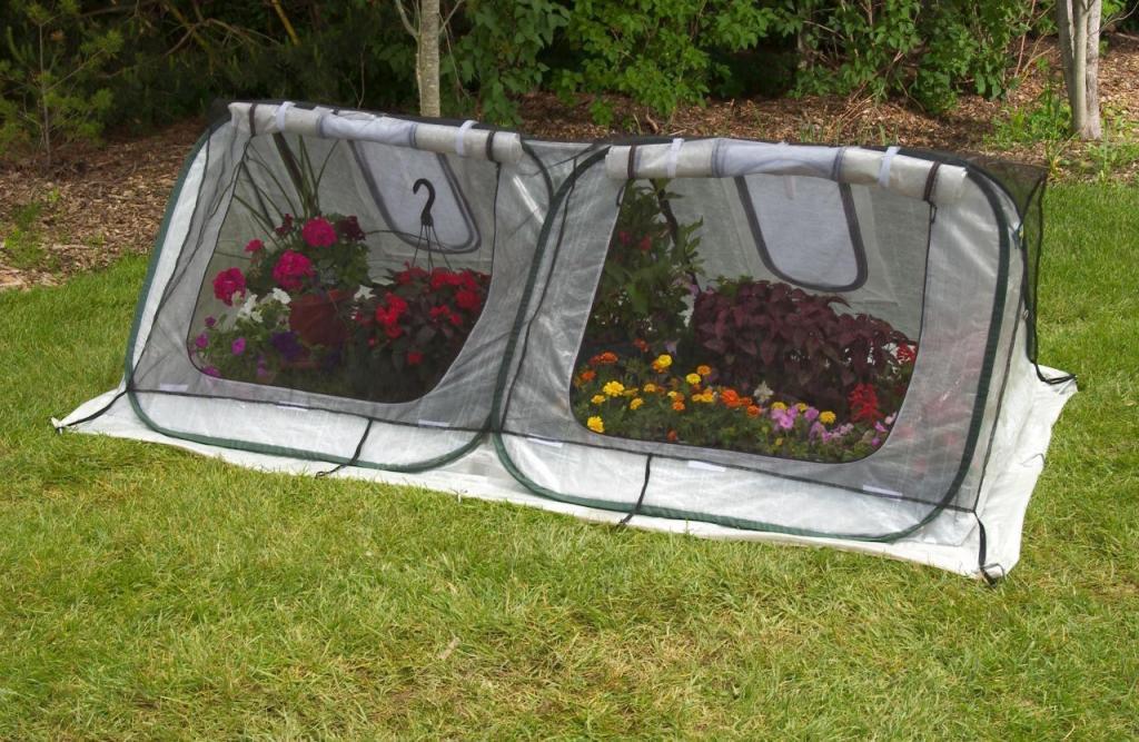 Amazon.com : Flower House FHSH200 StarterHouse Seed Starter ...