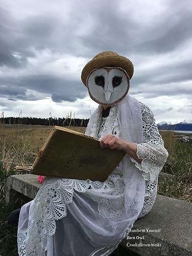 Owl Mask paper mache barn owl mask white owl snowy owl owl head animal head owl & Amazon.com: Owl Mask paper mache barn owl mask white owl snowy owl ...