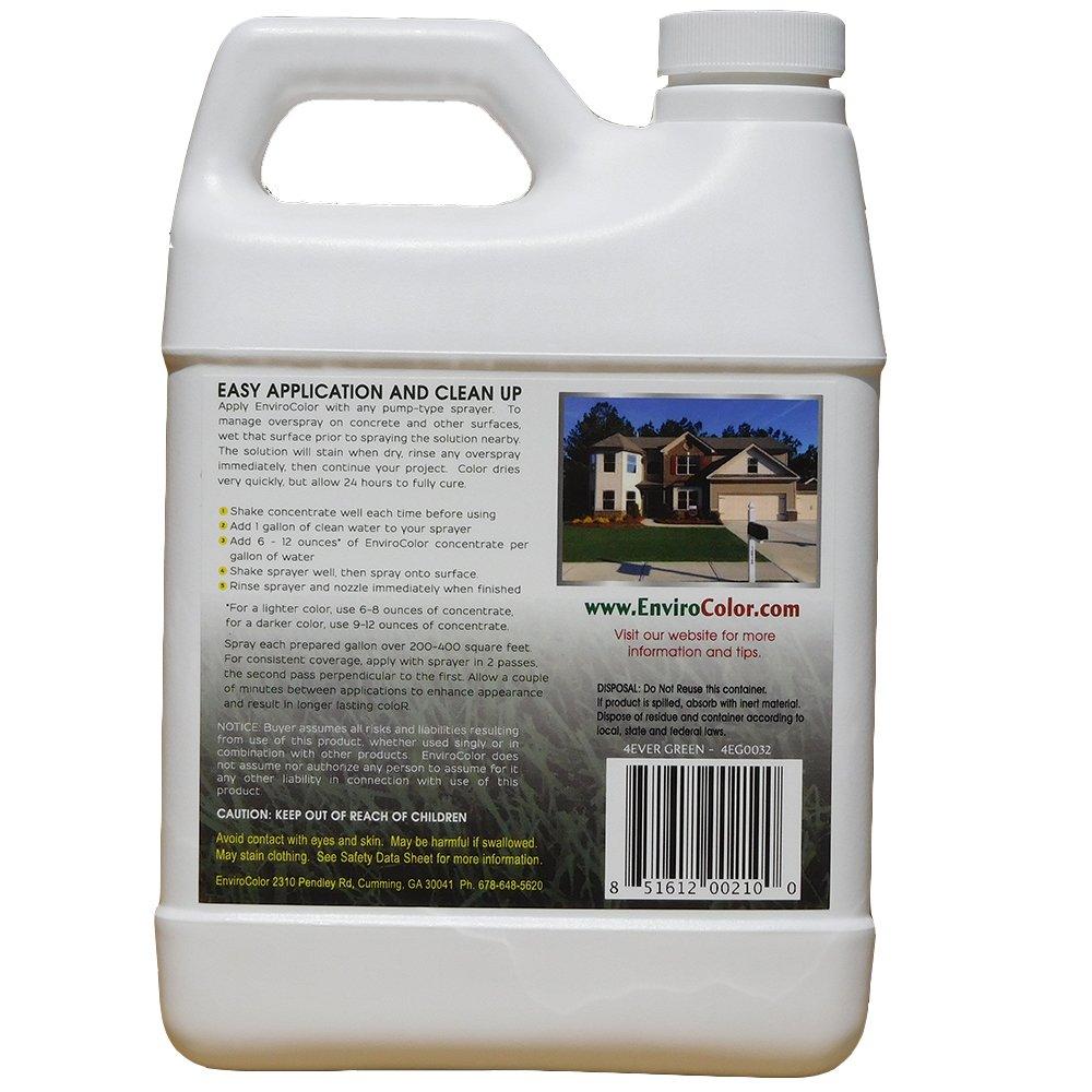amazon com 1 000 sq ft 4evergreen grass and turf paint garden