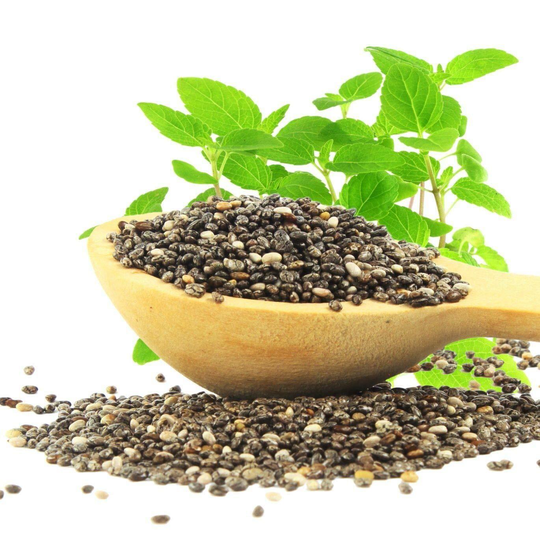 PLAT FIRM Germinación de las semillas: 1000: chÃa orgánica 1.000 ...