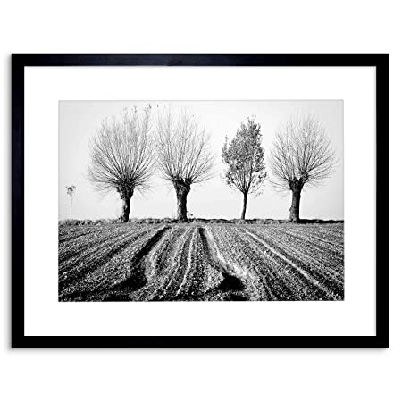 Wee Blue Coo 9x7 \'\' TREES HORIZON BLACK WHITE FRAMED ART PRINT ...