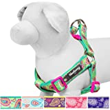 Blueberry Pet Soft & Comfortable Paisley Flower Print Neoprene Padded Dog Harness, 5 Colors, Matching Collar & Leash Available Separately