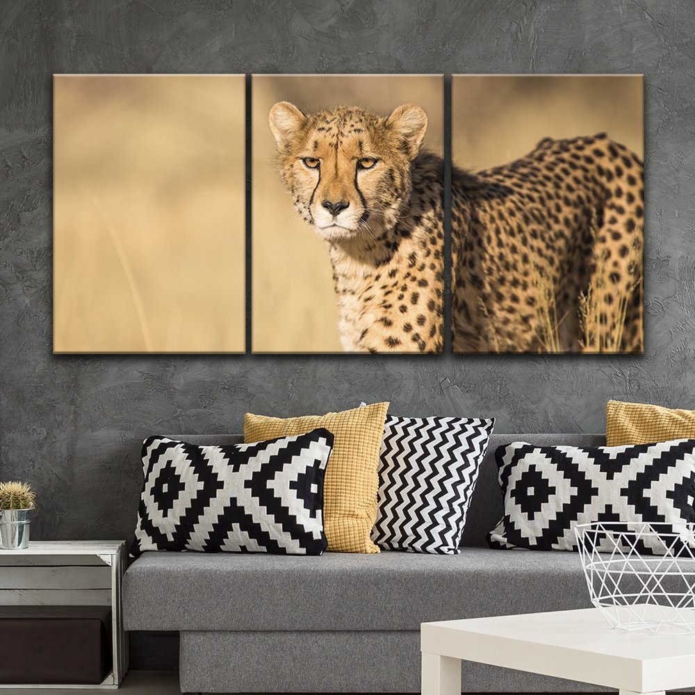 3 Panel Leopard in The Wild x 3 Panels - Canvas Art | Wall26