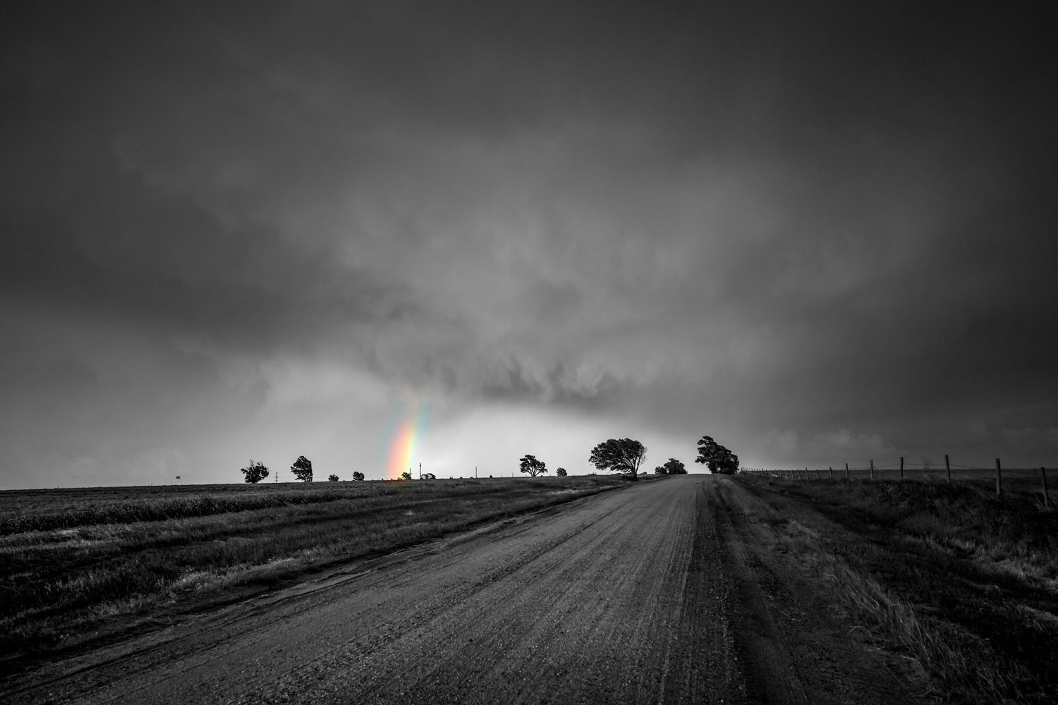Black and white photography art print picture of country road and colorful rainbow with tree silhouettes in southwest kansas modern country decor 5x7 to